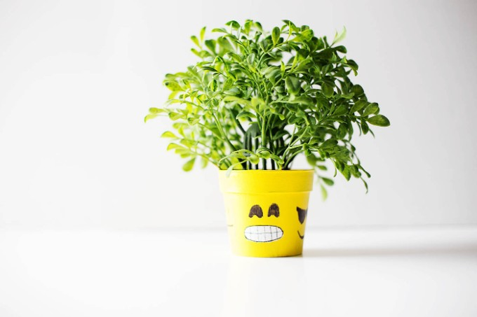 emoji flower pot