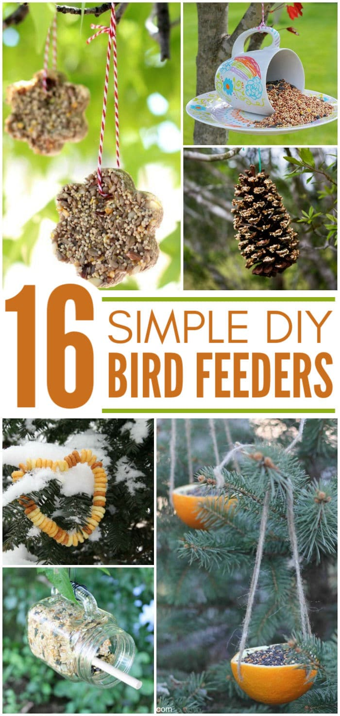 Do you love bird watching? Want to gather some feathered friends to your garden or yard? Make one of these DIY bird feeders today! We love the simplicity of #3!