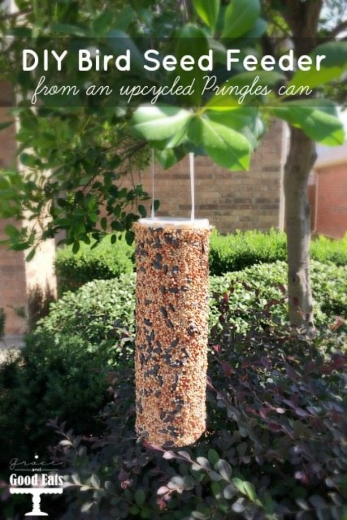 pringles can bird feeder