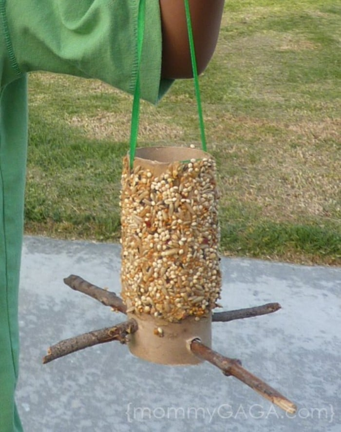 toilet roll bird feeders