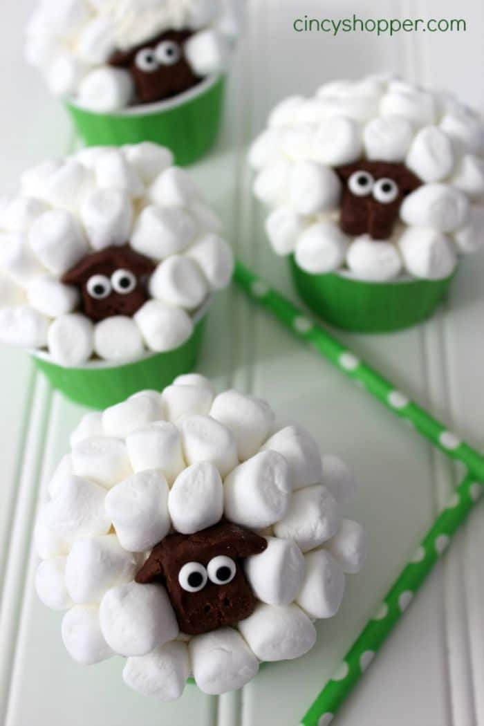 sheep cupcakes by Cincy Shopper